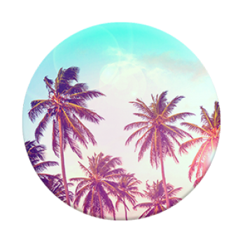 palm-trees_single_front_7dc34120-ada6-4527-afb1-48972b2f633e